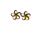 Jennibeans mini brown rimmed plumeria earrings